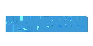 Zoom-letter logo