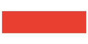 Pindora Access logo